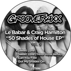 Le Babar & Craig Hamilton - 50 Shades of House, Vol. 2