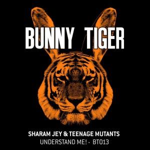 Sharam Jey, Teenage Mutants - Understand Me!