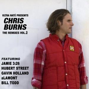 Ultra Nate' Presents Chris Burns The Remixes Vol. 2