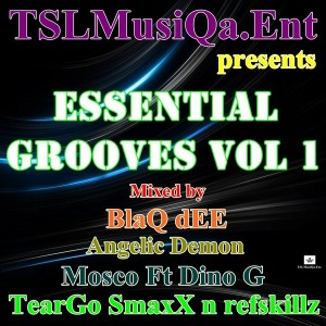 Various Artists - Essential Grooves, Vol. 1 [TSLMusiQa.Ent]