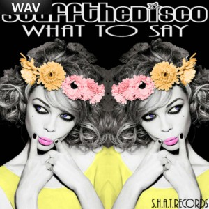 Stuff The Disco - What To Say [SHAT]