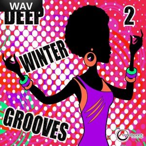 Various Artists - Deep Winter Grooves 2 [Transport]