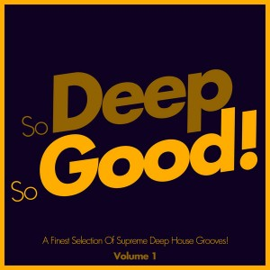 Various Artists - So Deep, So Good! - A Finest Selection Of Supreme Deep House Grooves- Volume 1 [SoSexy]