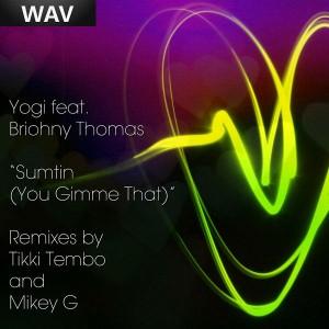 Yogi - Sumtin' You Gimme That [Shifted Music]