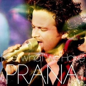 Alankara & Jazzy D feat. Lodewijk Van Gorp - Feel What We Have [Prana Records]