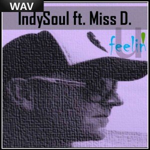 Indysoul feat Miss D - Feelin'u [Stagz Jazz Records]
