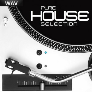 Various - Pure House Selection (Best Pure Vinyl House Selection) [Vinyl Sound]