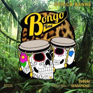 Derick Banks - Yobolo [Bongo Tone]