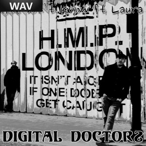 Digital Doctors feat Laura - You Don't Know [Liquid Mindsett Recordings]
