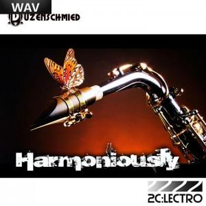 Duzenschmied - Harmoniously [2C Lectro]
