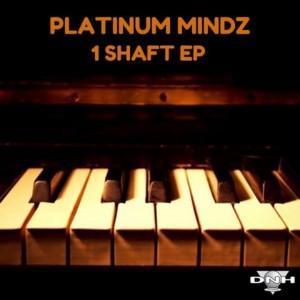 Platinum Mindz - 1Shaft EP [DNH]