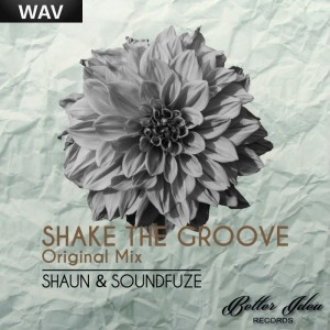 Shaun Soundfuze - Shake The Groove [Better Idea]