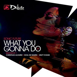 Sonic Future - What You Gonna Do (Remixes) [Delecto]