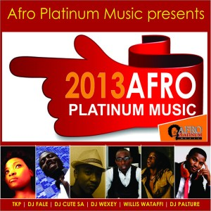 Various Artists - 2013 Afro Platinum Music [Afro Platinum Music]