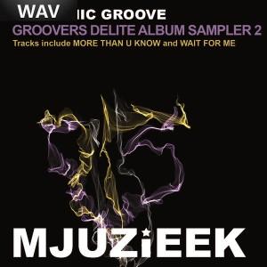 Rhythmic Groove - Groovers Delite Album Sampler Vol  2 [Mjuzieek Digital]