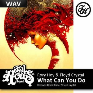 Rory Hoy & Floyd Crystal - What Can You Do [Tall House Digital]