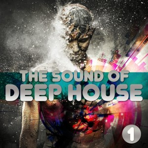 Various - The Sound Of Deep House Vol 1 Selected House Grooves [Drizzly Music]