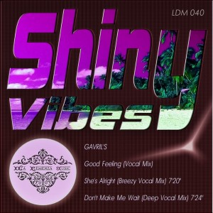 Gavril's - Shiny Vibes [La Demenza Music]