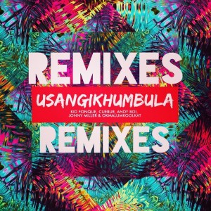 Kid Fonque, Cuebur, Andyboi, Jonny Miller, Okmalumkoolkat - Usangikhumbula (Remixes) [Soul Candi Records]