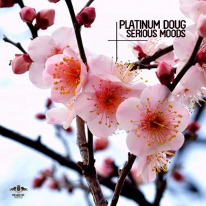 Platinum Doug - Serious Moods [Enormous Tunes]