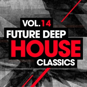 Various - Future Deep House Classics Vol 14 [LW Recordings]