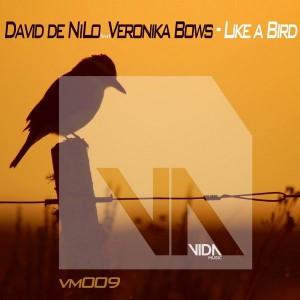 David De Nilo - Like a Bird [Vida Music]