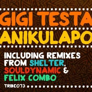 Gigi Testa - Anikulapo [Tribe Records]