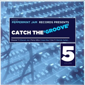 Various Artists - Peppemint Jam Records Pres., Catch the Groove, Vol. 5 [Peppermint Jam]