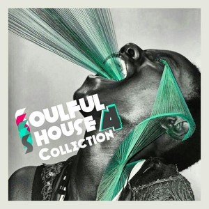Various Artists - Soulful House Collection Vol.2 [Perception Music]