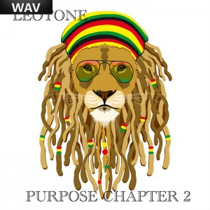 Leotone - Purpose Chapter 2 Leotone