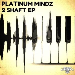 Platinum Mindz - 2 Shaft EP [DNH]