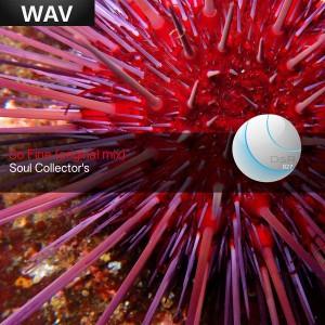 Soul Collectors - So Fine [Deep Soulful Recordings]