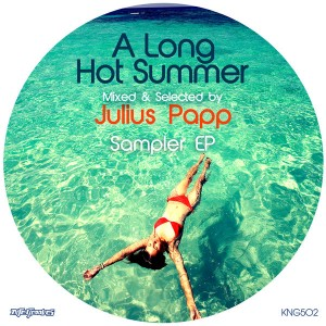 Various Artists - A Long Hot Summer_ Mixed & Selected By Julius Papp Sampler EP [Nite Grooves]