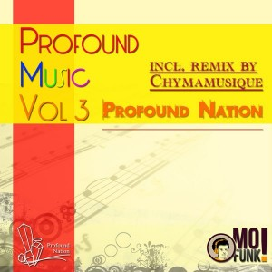 Various Artists - Profound Music, Vol. 3 [Mofunk Records]