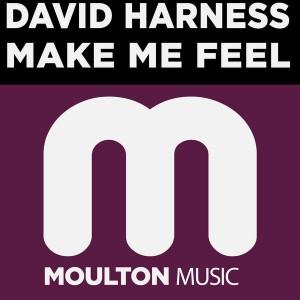 David Harness - Make Me Feel [Moulton Music]