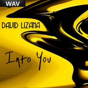 David Lizana - Into You [Music Taste]