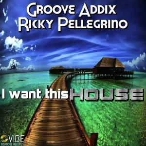 Groove Addix & Ricky Pellegrino - I Want This HOUSE [Vibe Boutique Records]