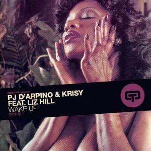 Pj D'Arpino & Krisy feat. Liz Hill - Wake Up [Ocean Trax]