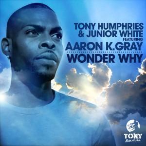 Tony Humphries & Junior White feat. Aaron K. Gray - Wonder Why [Tony Records]
