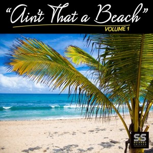 Various Artist - Ain't That A Beach Vol.1 [S&S Records]