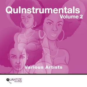 Various - Quantize QuInstrumentals Volume 2 [Quantize Recordings]