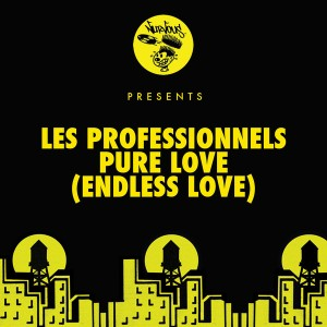 Les Professionnels - Pure Love (Endless Love) [Nurvous Records]