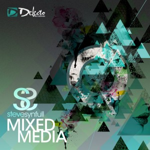 Steve Synfull - Mixed Media [Delecto]