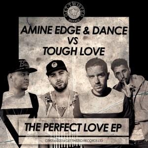 Amine Edge & Dance vs. Tough Love - The Perfect Love [Get Twisted Records]