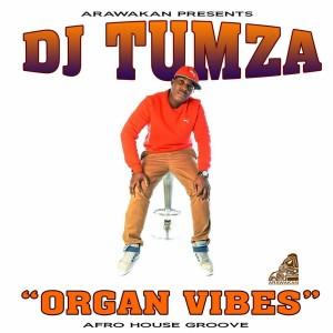 DJ Tumza - Organ Vibes [Arawakan]