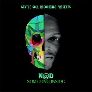 NAD - Something Inside [Gentle Soul Recordings]