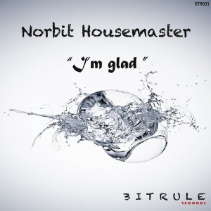 Norbit Housemaster - I'm Glad (Original HMS Mix) [Bit Rule Records]