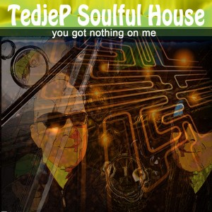Tedjep Soulful House - You Got Nothing On Me [M F Records]