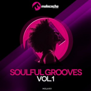 Various Artists - Soulful Grooves, Vol. 1 [Molacacho Records]