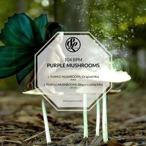 104 BPM - Purple Mushrooms [Sofa Lounge Records]